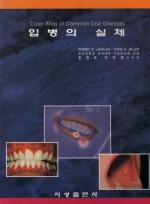 입병의 실체[Color Atlas of Common Oral Diseases]