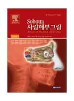 Sobotta사람해부그림 (2vols)-Atlas of human anatomy head, neck, upper limb 14h