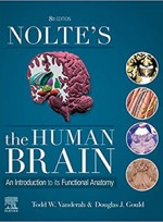 Nolte's The Human Brain: An Introduction to its Functional Anatomy 8e