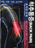 척추통증 - 움직임 문제 -(Back Pain: A Movement Problem-A clinical approach incorporating relevant research and practice)