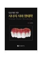 임상가를 위한 시너지 치아 형태학
