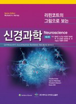 리핀코트의 그림으로 보는 신경과학 제2판