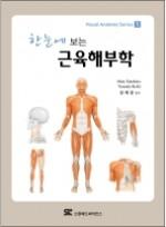 한눈에 보는 근육해부학 (Visual Anatomy Series) [페이퍼백]
