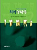 치아형태학 (권순석)