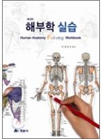 해부학 실습: Human Anatomy Coloring Workbook(2판)