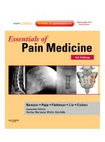 Essentials of Pain Medicine, 3/e