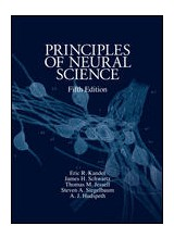 Principles of Neural Science,5/e