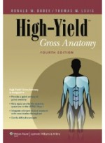 High-Yield™ Gross Anatomy, 4/e